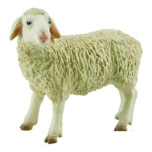 ovca 600BL62320